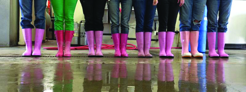 pink-boots-society_IMAGE.jpg